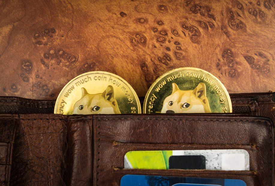 Zwei Dogecoin-Münzen gucken aus einer Geldbörse hervor