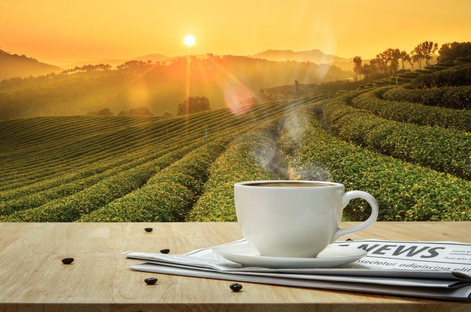 Kaffee Tasse, auf Zeitung und vor Sonne