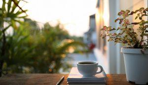 Kaffee Tasse mit Pflanze